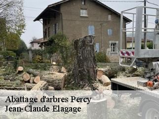 Abattage d'arbres  percy-38930