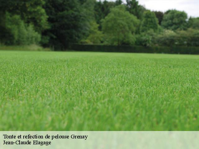 Tonte et refection de pelouse  grenay-38540 Elagage Mathurin
