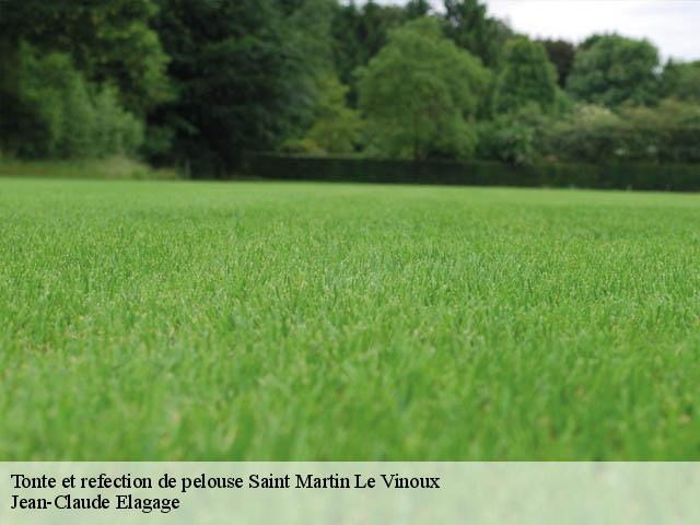Tonte et refection de pelouse  saint-martin-le-vinoux-38950